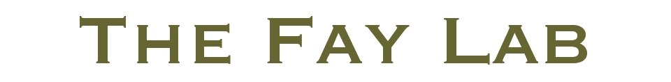 Fay Lab